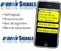 Online platform binary options trading Serbia