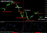 computer programs Guide Trading Binary Options Purmerend with